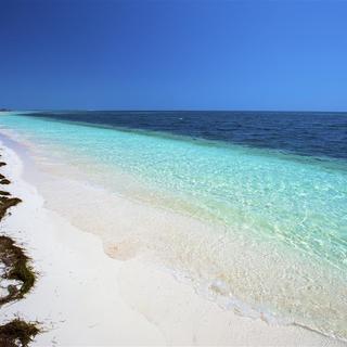 Strand auf Cayo Largo